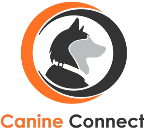 Canine Connect